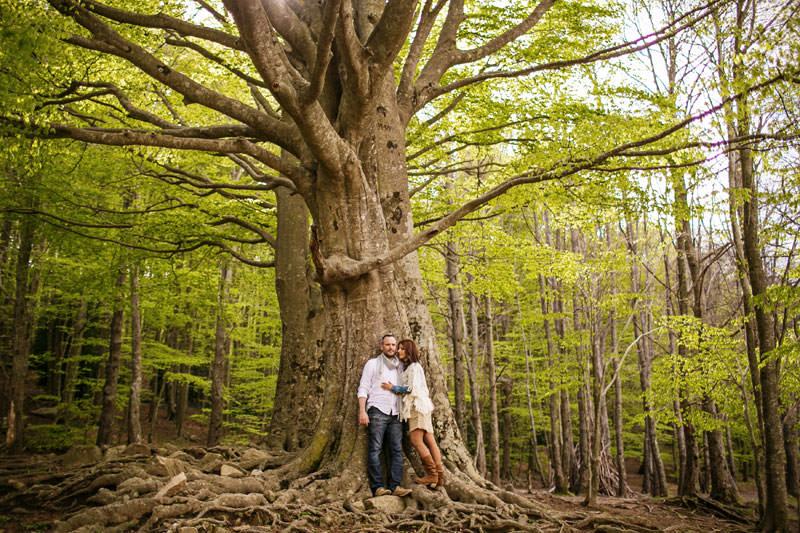preboda bosque montseny